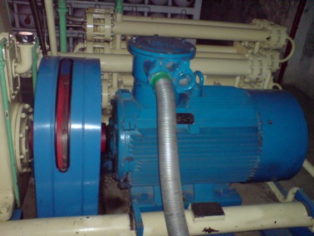 cng-motor