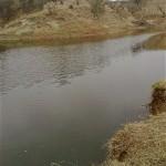 SI_Sharif_International_Solar_water_Pump_Fish_Farm_015