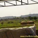 SI_solar_water_Pump_Rawalpindi_Pakistan_002