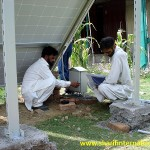 SI_solar_water_Pump_Rawalpindi_Pakistan_006